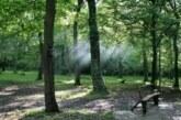 Počela Egzitova Zelena Я:Evolucija: Zasađeno 13.000 stabala hrasta na Fruškoj gori