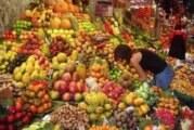 Citrusno voće snižava holesterol