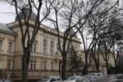 Zanimljiv program u Muzeju Vojvodine