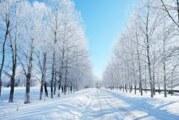 Hladno i oblačno sa snegom