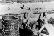 Genocid u Jasenovcu – to je bio državni zločin