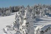 U Ljuboviji metar snega, 500 stubova porušeno