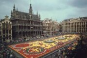 Delegacija APV u Briselu: Iskorak na projektima ka EU fondovima