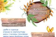 """Novosadska jesen"" 15. put – Priroda na recept"