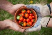 Edukacija iz oblasti poljoprivredne proizvodnje