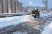 Sve službe u Novom Sadu spremne za sneg