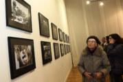 Godišnja izložba fotoreportera Novog Sada i Vojvodine