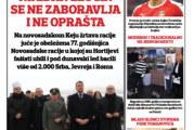 Novosadski reporter 206