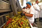 Nemci otvorili fabriku u Gospođincima, posao za 250 radnika