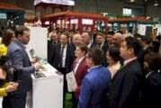 Antić: Odnosi Srbije i Kine su na najvišem nivou