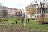 RTV Počelo ozelenjavanje Vojvodine, biće zasađeno 10.000 sadnica