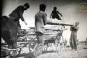 """Dokumentarni film """"Za bolju žetvu"""" u Narodnom muzeju Zrenjanin"""