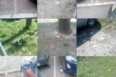Apel Novosađanima da ne bacaju smeće po javnim površinama