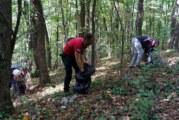 Čak 60 džakova otpada sakupljeno na Fruškoj gori: Promenimo navike za čistiju Srbiju