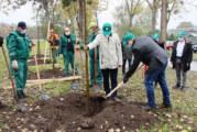 """Počela akcija """"Oživimo parkove"""" u Novom Sadu"""
