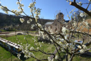 Izložba fotografija o Manastiru Bešenovo u Novom Sadu