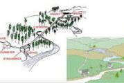 Vlada Crne Gore raskinula sedam ugovora o koncesiji za gradnju MHE
