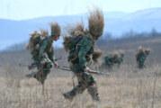 Stefanović: Ako se vrati obavezni vojni rok, biće 6 meseci