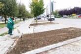 Sadnja zelenila na dva Bulevara